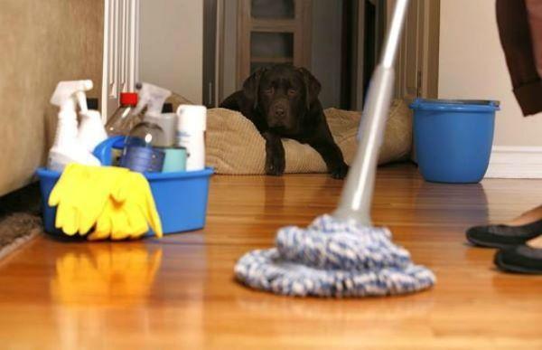 Mệt mỏi với việc dọn dẹp nhà cửa